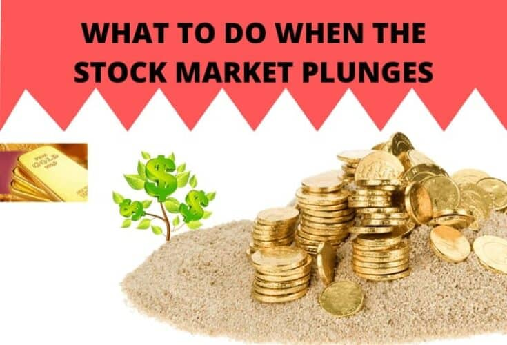 What To Do When The Stock Market Plunges